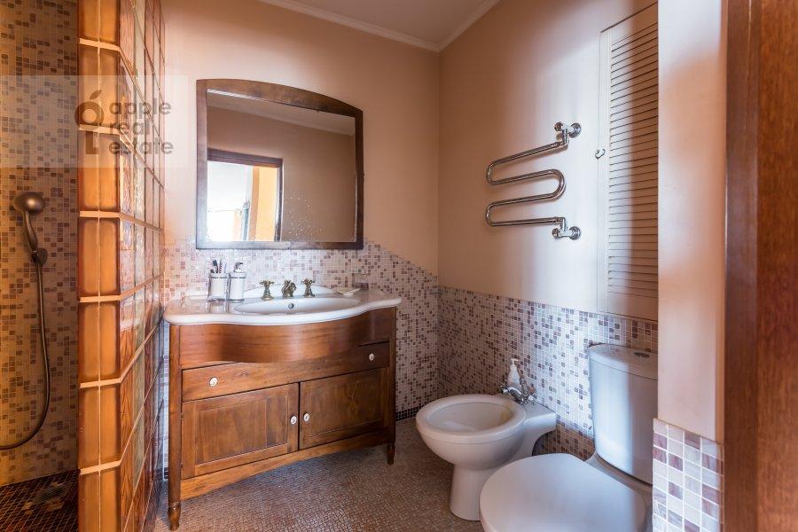 Bathroom of the 1-room apartment at Studenetskiy per. 3